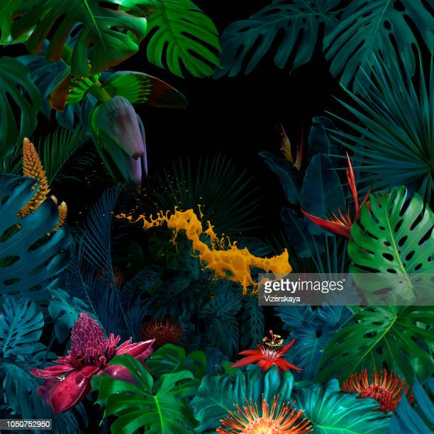 surreal jungle portrait - flower wallpaper stock pictures, royalty-free photos & images