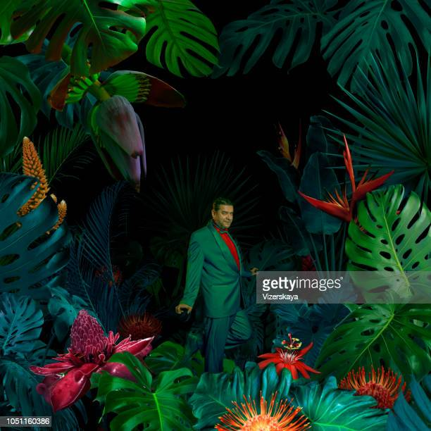 surreal jungle portrait - multi colored suit stock photos and pictures