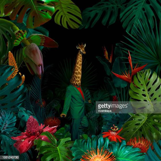 surreal jungle portrait - animals and people stock pictures, royalty-free photos & images