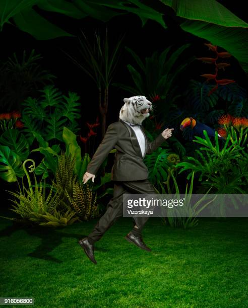 surreal portret of tiger men in night jungle - surreal stock pictures, royalty-free photos & images