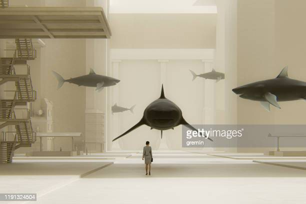 surreal street with woman standing among sharks - adversidade imagens e fotografias de stock