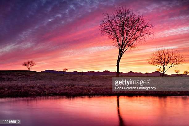 Surreal sunset in desert southwest