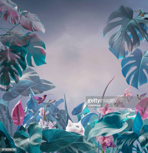surreal tropical background - flower wallpaper stock pictures, royalty-free photos & images