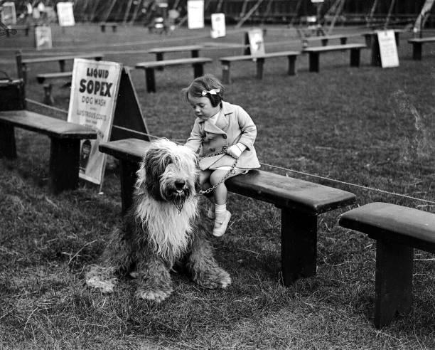 surrey-england-7th-july-1931-miss-pat-hi