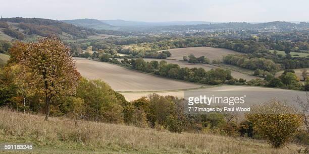 Surrey hills landscape