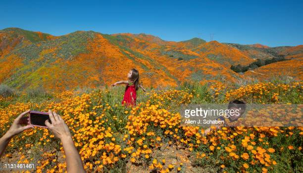 Surrounded by the wildflower super bloom Kaleb and Ava Gutierrez of Aliso Viejo play amid the poppies while taking photos with their mom in the rare...