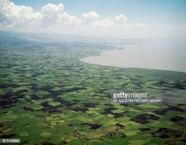 Surrounding area of the Lake Tana Northern Ethiopia