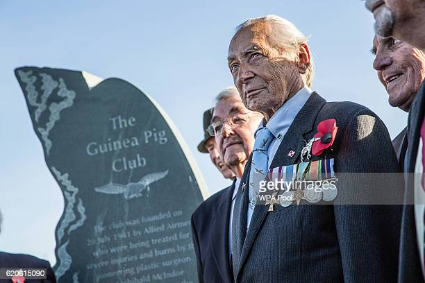 Surviving members of the RAF's 'Guinea pig club' stand next to their newly unveiled memorial to those airmen saved after being burned in their...