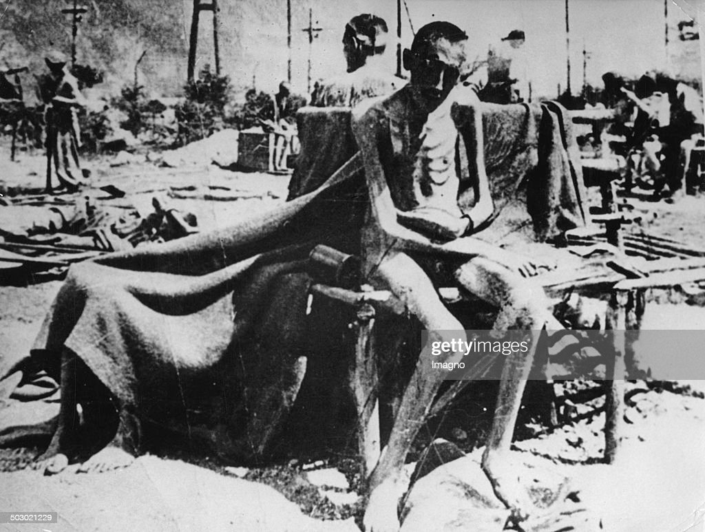 concentration camp stock photos and pictures | getty images