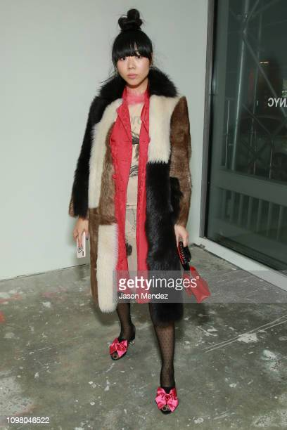 Susie Bubble on February 11 2019 in New York City