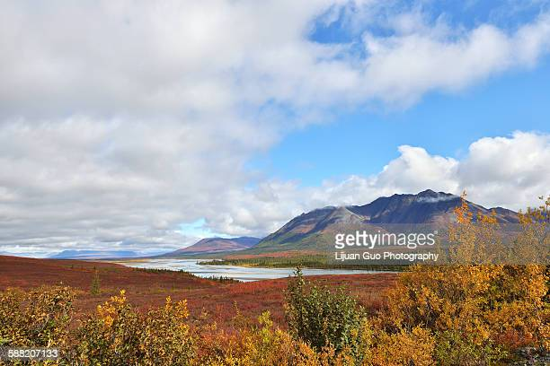 susitna river and mountains alone denali hwy - mt. susitna stock pictures, royalty-free photos & images