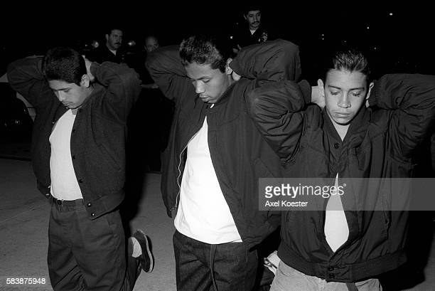 crash anomie la gangs Crash developed a culture of its own in which officers began emulating gang  members in dress and manner they had a reputation among los angeles street .