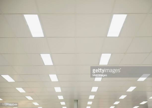 suspended ceiling lights - fluorescent light stock pictures, royalty-free photos & images