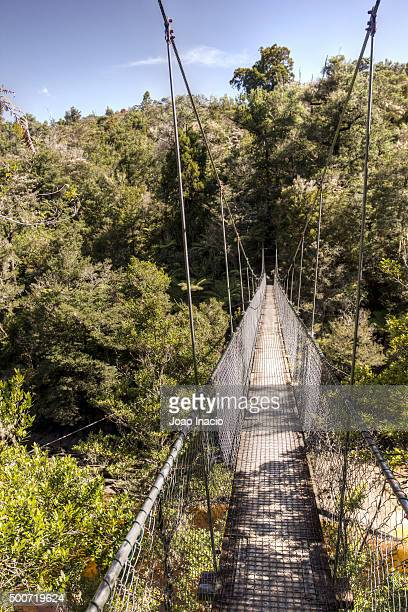 Suspension bridge at Falls River, Abel Tasman National Park