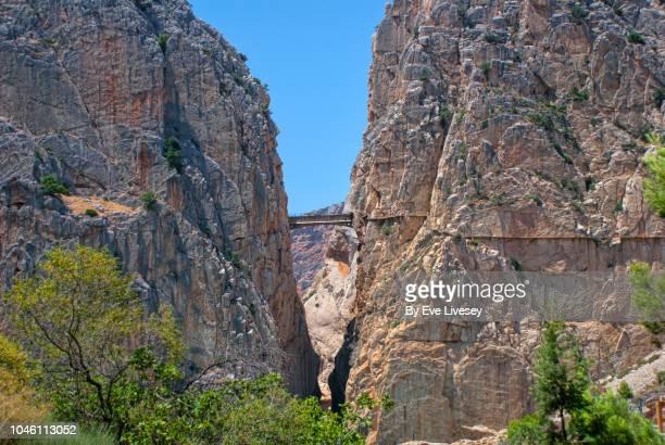 suspension bridge & elevated walkway - caminito del rey fotografías e imágenes de stock