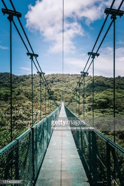 suspension bridge in costa rica, central america - iacomino costa rica foto e immagini stock