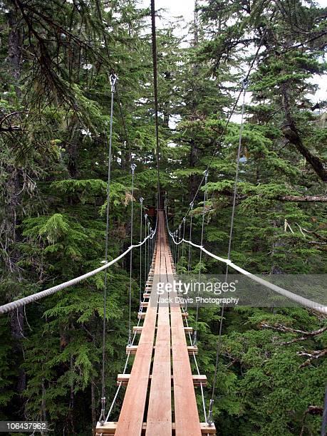 Suspension Bridge in Juneau, Alaska