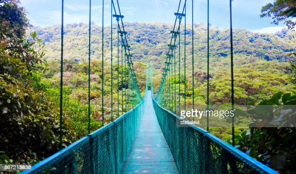 suspension bridge in rain forest, costa rica - costa rica stock photos and pictures