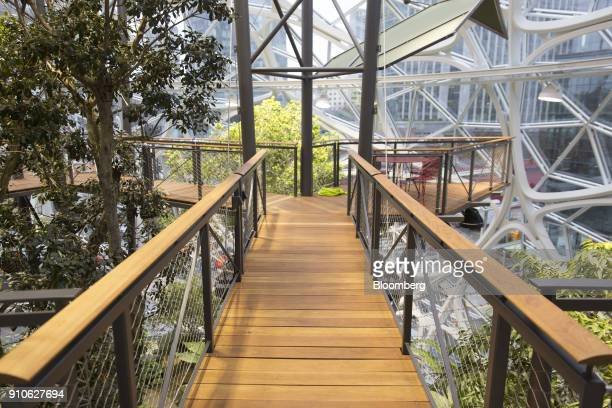 A suspension bridge is seen inside the Amazoncom Inc Spheres in Seattle Washington US on Tuesday Jan 23 2018 The online retailer is scheduled to...