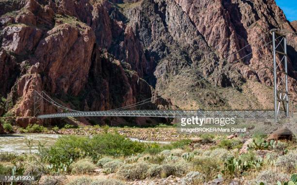 Suspension Bridge of the Bright Angel Trail over the Colorado River, Grand Canyon National Park, Arizona, USA