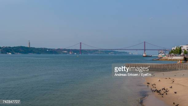 suspension bridge over sea against clear sky - eriksen foto e immagini stock