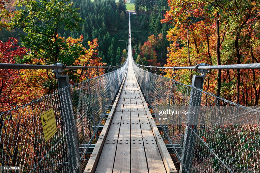Suspension footbridge Geierlay (Hangeseilbrucke Geierlay), Germany : Stock Photo