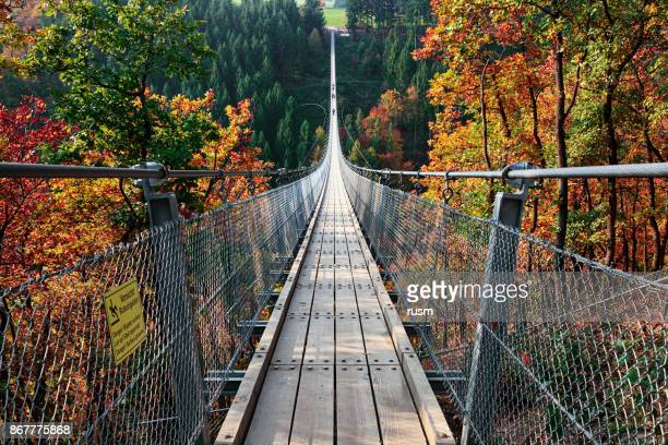 suspension footbridge geierlay (hangeseilbrucke geierlay), germany - suspension bridge stock pictures, royalty-free photos & images