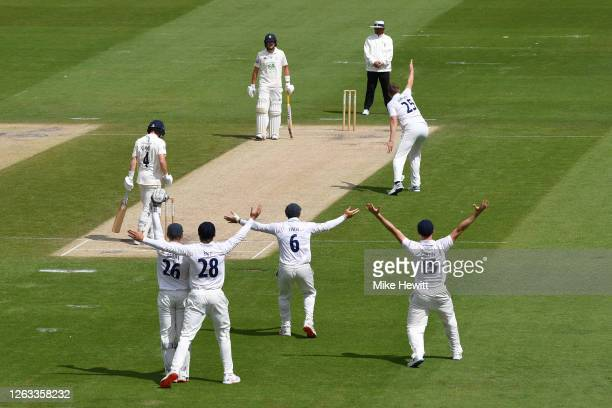 Sussex players plead in vain for lbw against Harry Came of Hampshire during Day 2 of the Bob Willis Trophy match between Sussex and Hampshire at The...