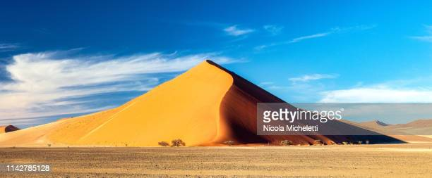 sussusvlei desert, namibia - ナミブ砂漠 ストックフォトと画像
