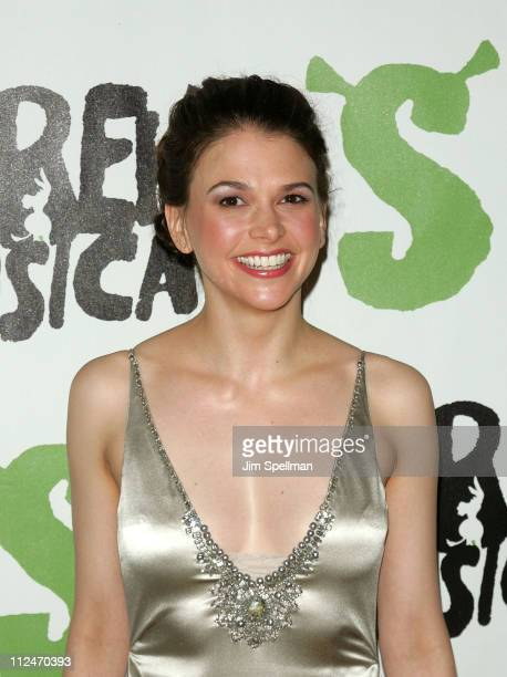 """Sutton Foster attends the opening night party for """"Shrek The Musical"""" on Broadway at the Plaza hotel on December 14, 2008 in New York City."""