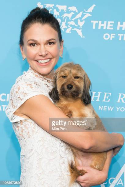 Sutton Foster with Mabel attends The Humane Society Of The United States 9th Annual To The Rescue Gala at Cipriani 42nd Street on November 09 2018 in...