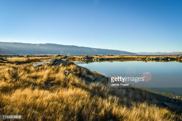 sutton salt lake, otago, new zealand - dunedin new zealand stock pictures, royalty-free photos & images