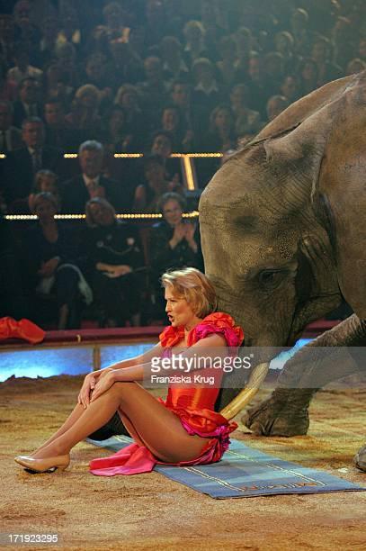 Suzanne Von Borsody Bei Ihrer Elefantennummer Bei Der Galapremiere 'Stars In Der Manege' Im Zirkus Krone In München