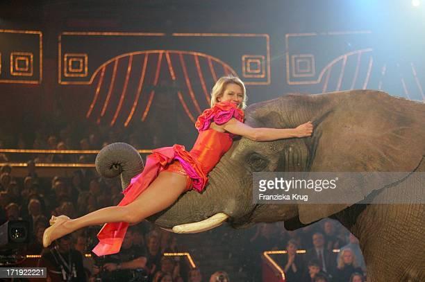 Suzanne Von Borsody Mit Ihrer Elefantennummer Bei Der Zirkusveranstaltung 'Stars In Der Manege' Im Circus Krone In München