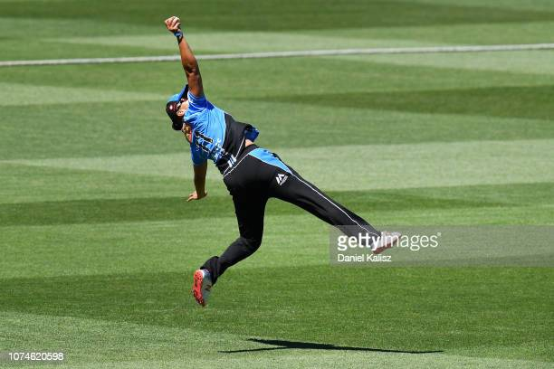 Suzie Bates of the Adelaide Strikers takes a catch to dismiss Mignon du Preez of the Melbourne Stars during the Adelaide Strikers v Melbourne Stars...