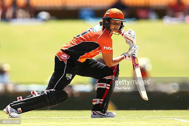 Suzie Bates of the Scorchers bats during the Women's Big Bash League match between the Perth Scorchers and the Brisbane Heat at the WACA on January...