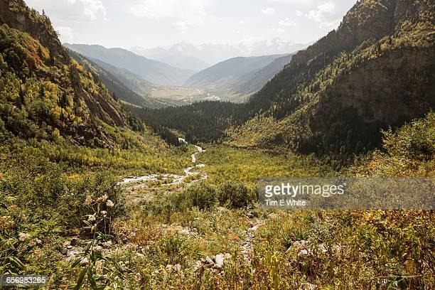 svaneti, republic of georgia - georgia country stock pictures, royalty-free photos & images