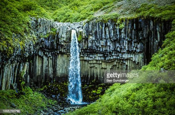 svartifoss waterfall, iceland - skaftafell national park stock photos and pictures