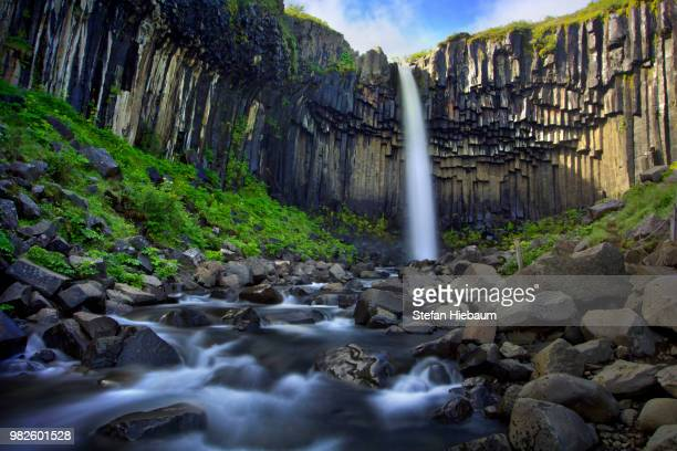 svartifoss waterfall in iceland. - skaftafell national park stock photos and pictures
