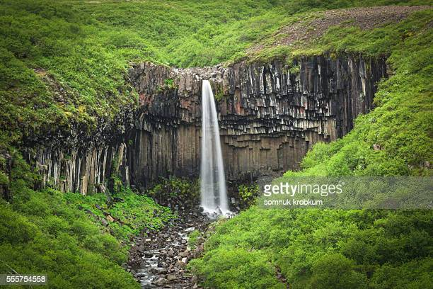 svartifoss waterfall in summer, iceland - skaftafell national park stock photos and pictures