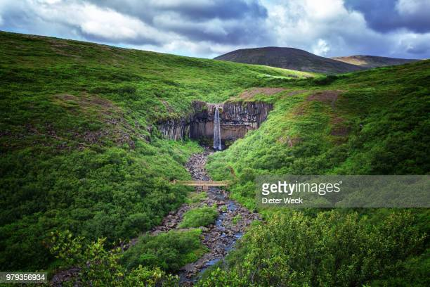 svartifoss waterfall, skaftafell, iceland - skaftafell national park stock photos and pictures