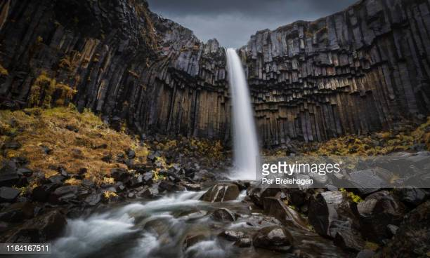 svartifoss waterfall_iceland - basalt stock pictures, royalty-free photos & images