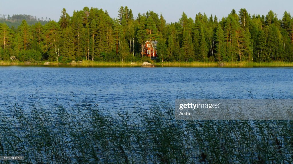 Lake in the province of Lappland. : News Photo
