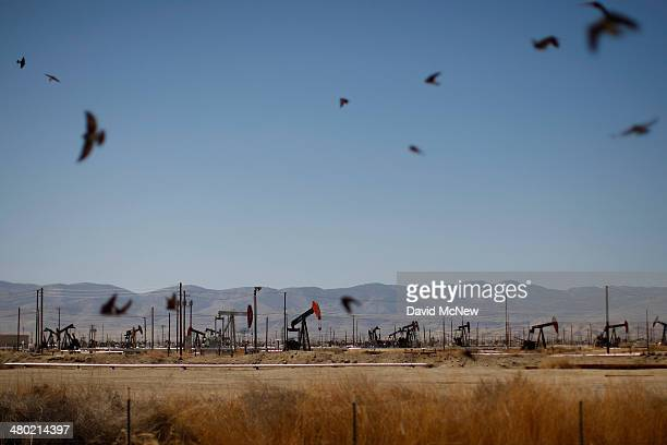 Swallows fly over a canal in an oil field over the Monterey Shale formation where gas and oil extraction using hydraulic fracturing or fracking is on...