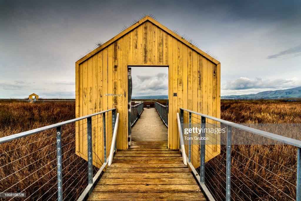 Swampdoor : Stock Photo