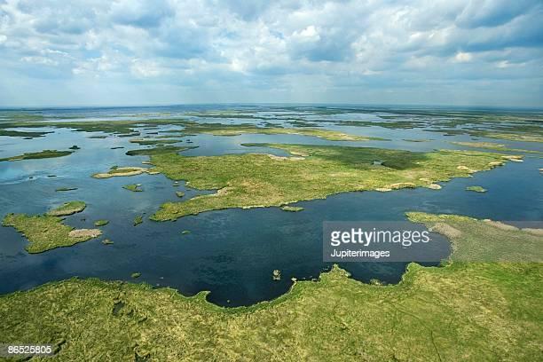 Swampy landscape, Texas