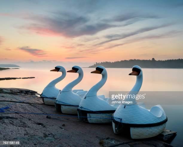 Swan boats at sunset