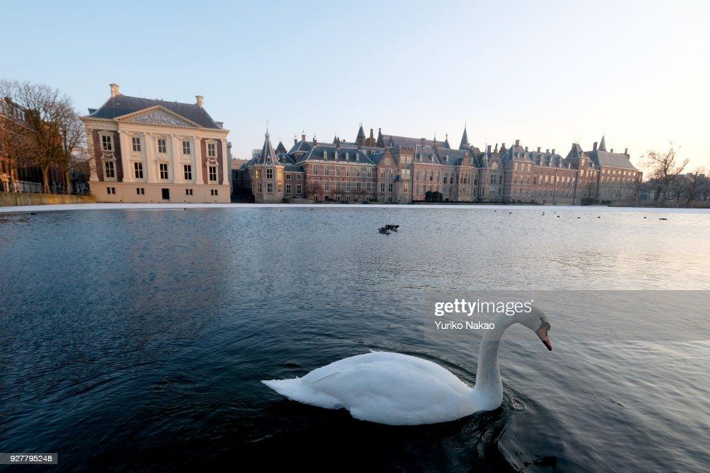 Frozen Hofvijver In The Hague : News Photo
