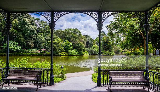 swan lake gazebo - botanical garden stock pictures, royalty-free photos & images