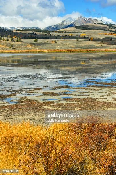 swan lake - lake bed fotografías e imágenes de stock